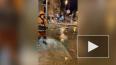 Маяковскую улицу затопило водой из-за ошибки коммунальщи...
