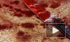ЯНАО: Женщина ранила сожителя ножом в живот, заклеила рану пластырем и легла спать