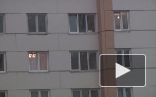 33 рубля за уборку снега летом. Жителям Шушар ввели новую статью расходов