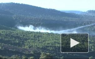 Покурили кальян. Леса Израиля подожгли подростки