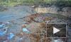 Видео: во Владимирской области целое озеро с рыбой и водорослями ушло под землю