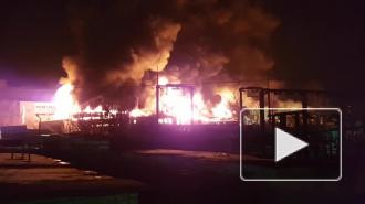 Очевидец снял крупный пожар на складе в Подмосковье