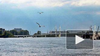 Мост через остров Серный в Петербурге появится к ЧМ-2018