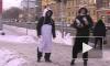 По мехам! Защитники  животных в лютый мороз  призвали отказаться от норки и кожи