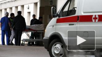 В ДТП на Обуховской обороны пострадала 4-летняя девочка