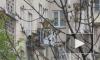 В Петербурге пожарные спасли щенка, которого хозяева заперли на балконе