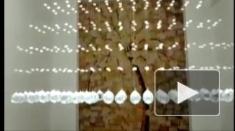 Видео: землетрясение в Китае