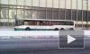 В Купчино столкнулись автобус и маршрутка, 5 человек пострадало