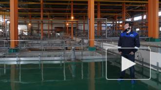 """""""Водоканал"""" показал, как очищается вода на Южной водонапорной станции"""