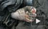 Тело полуобнаженной женщины нашли рядом с трассой в Мурино, а кости человека — в поселке Металлострой