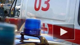 ДТП в Санкт-Петербурге: пьяный полицейский сбил насмерть петербуржца, на Седова у трактора оторвало колесо