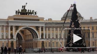 В Петербурге на Дворцовой площади 20 декабря пройдет зажигательный предновогодний флешмоб