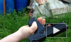Стрельба из травмата по жести. Испытание травматического пистолета Zoraki 925