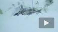 Ан-148: На месте падения найдены 1400 фрагментов тел и б...