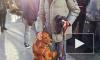 Собака-обнимака покорила сердца пользователей сети