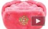 Огромную госдеповскую картошку закидали розовой шапкой-ушанкой