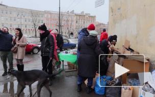 В Коломне массово избавились от пластика ради саженцев