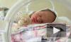 Восемь младенцев умерли в больнице Нальчика из-за новогодних отключений света