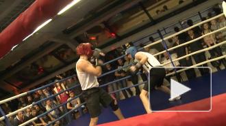В Петербурге показали жесткий боксерский спарринг (видео)