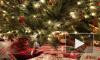 Психолог посоветовала украшать ёлку 31 декабря