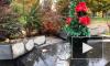 Полиция проверяет погром памятника жертвам радиационных катастроф в Колпино