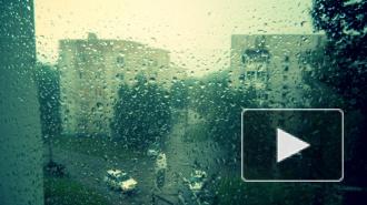 В Петербурге ожидается мощный штормовой ветер