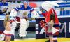 Бобровский: Сборная была единым кулаком в матче Белоруссия - Россия