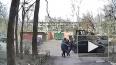 Похитителя девушки на Тельмана выдворят из России