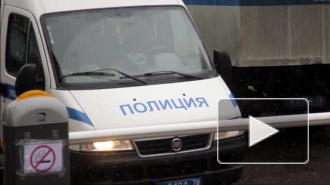 Приезжий из Астрахани пытался на улице изнасиловать петербурженку