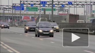 В Петербурге женщина-депутат подозревается в том, что она насмерть сбила на зебре пешехода