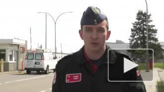 Самолет пилотажной группы ВВС Канады столкнулся с птицей