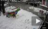Появилось видео, как кортеж Порошенко сбил пенсионера