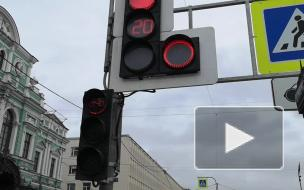 Эксперт прокомментировал появление первого велосветофора в Центральном районе