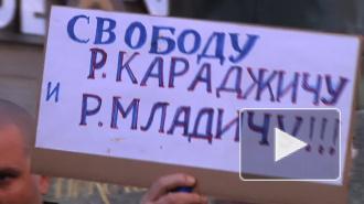 На пикете в поддержку Ратко Младича сожгли чучело президента Сербии