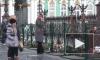 """Пьяный петербуржец """"признался"""" во взрыве российского аэробуса в Египте"""