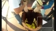 """В Петербурге входят в моду экстремальные прыжки с """"Рыбы"""""""