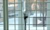 В больнице в Колпино пациент погиб, выпав из окна