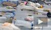 Неплатежи за вывоз мусора в России достигли 65–70%