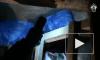Жуткое видео из Магадана: Мужчина отсидел в тюрьме за избиение сожительницы, вышел и забил ее насмерть