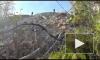 Опубликовано видео с места убийства 16-летней школьницы в Адыгее, которая пропала в мае по дороге из школы