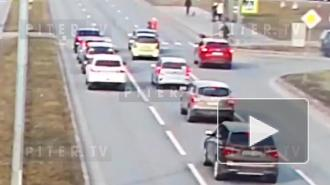 Молодого автомобилиста, устроившего драку из-за ДТП на Северном проспекте, задержали