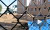 Школьники на Петроградке остались без гимназии