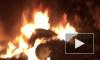 На одной из дорог Карелии полностью сгорел Jaguar