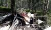 Пропавший легкомоторный самолет найден под Новосибирском, пилот погиб