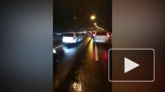 Резкое торможение привело к аварии с 10 авто на КАД