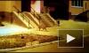 Видео как по Благовещенску рысь гуляла