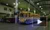 В Петербурге появятся выделенные полосы для трамваев