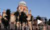 Петербургские евреи подсластили медом 5774 год от сотворения мира