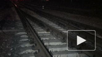 Захват белгородского стрелка полицейские сняли на видео