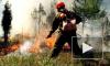 В Забайкалье разоблачены мошенники, выдававшие себя за жертв лесных пожаров